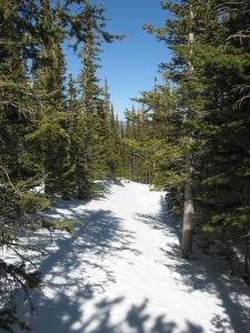 Still snowy trails